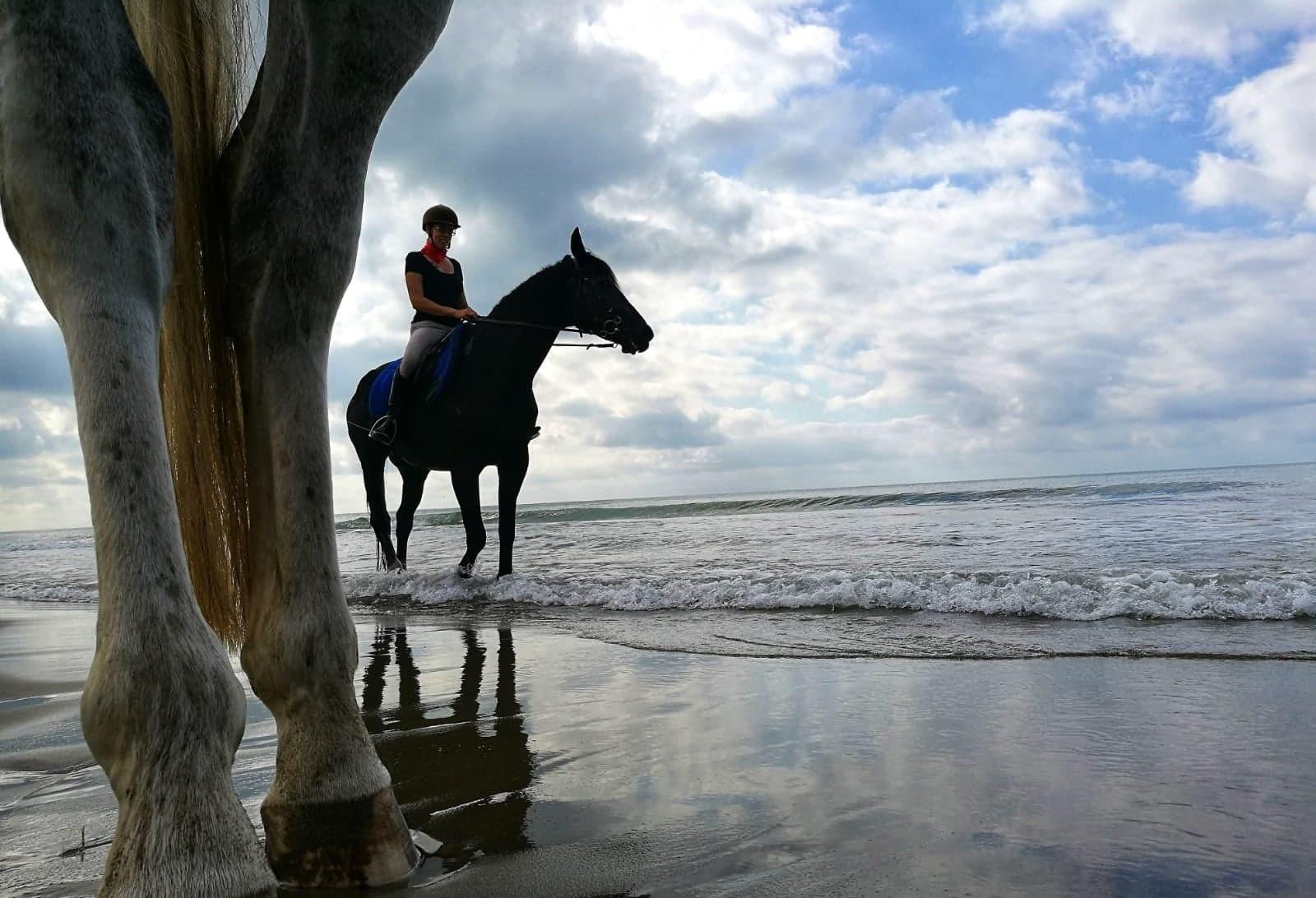 Escursioni a cavallo in Maremma
